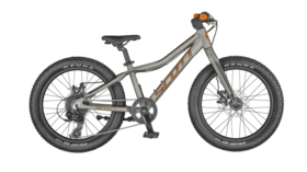 Scott Roxter 20 Raw Alloy Kids Mountain Bike